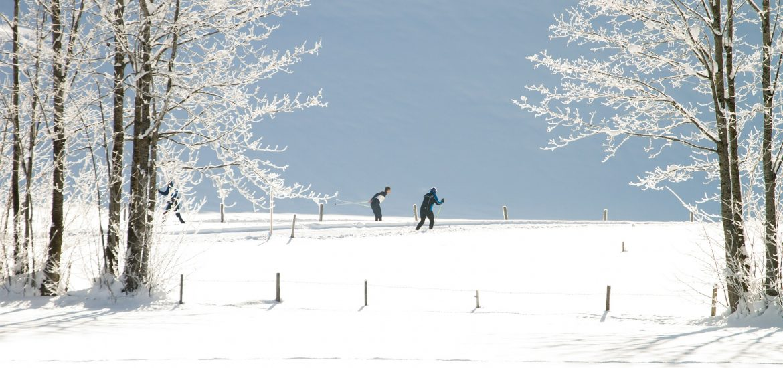 cross-country-skiing-427235_1920
